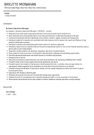 Resume Operations Manager Business Operations Manager Resume Sample Velvet Jobs 5