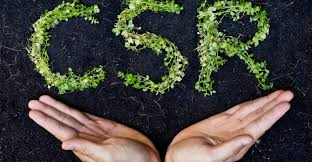 importance of csr strategy and csr activities in need of undertaking csr activities in