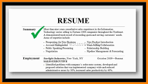 Resume Professional Summary Impressive Professional Summary In Resume Holaklonecco