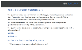 Marketing Strategy Questionnaire New Buckland