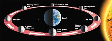 Phases Of The Moon Chart For Kids The Phases Of The Moon National Geographic Kids