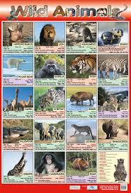 wild animals chart.  Animals Wild Animals Poster For Chart