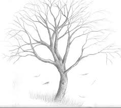 tree drawing tumblr. Contemporary Drawing Tree Drawing  Drawings Tumblr By Claymation With R