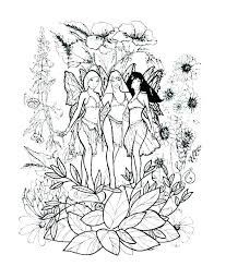 fairy color pages fairy coloring pages to print fairies printable sheets free cute