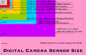 Image Sensor Size Comparison Chart What Camera Should I Buy Updated Welcome To Room557