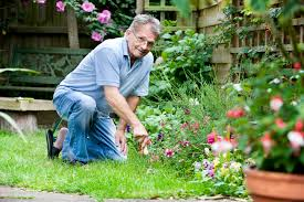 how to be a gardener. Gardening Questions How To Be A Gardener