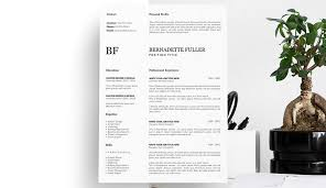 17 Best Free Ui Designer Resume Samples And Templates