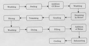 Modern Technology Of Food Processing Agro Based Industries