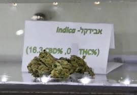 high cbd cannabis