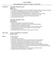 Peer Specialist Sample Resume Certified Peer Specialist Resume Samples Velvet Jobs 1