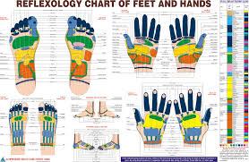 Reflexology Chart The Little Shaman