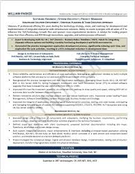 executive resume samples professional resume samples resumes s marketing resume example executive level