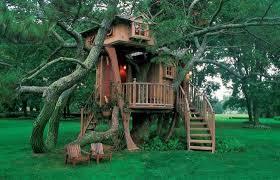 Plain Kids Tree House Plans Designs Free In Creativity Ideas