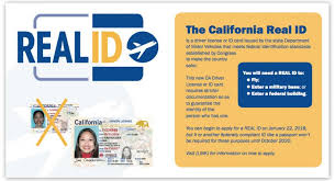 - Website California's 78th Real Id Applying Representing District Gloria Assembly For Todd The Official Assemblymember California