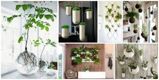 fullsize of manly fresh mini gardens that will surprise you inspirations zerosoil mini garden mini herb