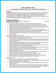 making a concise credential audit resume how to write a resume it auditor resume and big 4 audit resume