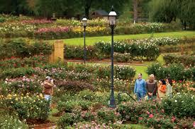 tyler rose garden in tyler tx