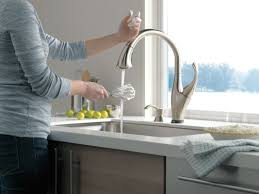 Discontinued Delta Kitchen Faucets Faucetcom 9192t Arsd Dst In Arctic Stainless By Delta