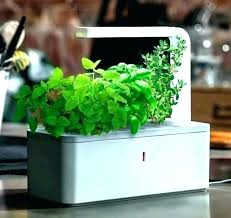 indoor herb garden kit indoor herb garden kit with light grow tire indoor herb garden kit