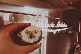 The sighting of a snowy owl on cape cod is always an occasion, and now coffee lovers can combine their favorite brew with the slightly elusive, slightly mysterious raptor at 2624 main street in brewster. Snowy Owl Coffee Roasters Posts Facebook