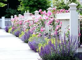 white fence ideas. Full Sun Garden Design Landscape Fence Ideas Flowers How Does Your Grow A White I