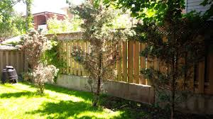 Fast growing privacy hedge or alternative