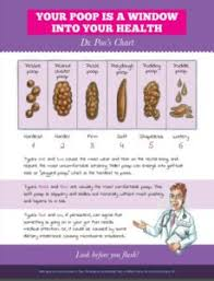 Childrens Stool Chart Dr Poos Family Friendly Poop Chart
