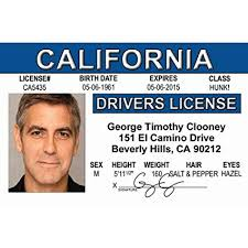 License 4 Clooney's Driver's amp; Signs Home Ngcid com Fun Kitchen Amazon