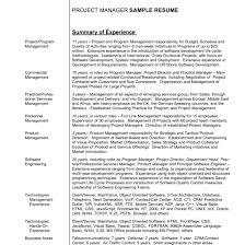 Resume Summary Statement Samples Resume Summary Statement Examples Excellent Example Resume Summary 13
