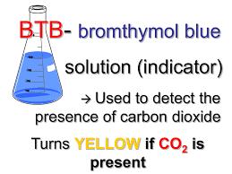 Co 2 Btb Solution