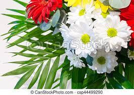 """Résultat de recherche d'images pour """"bouquet de fleurs multicolores"""""""