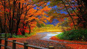 Autumn Computer Wallpapers - Top Free ...