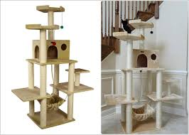 cool cat tree furniture. Cool Cat Tree Furniture Designs Your Will Love L