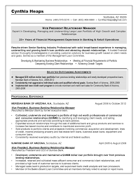 Banking Executive Sample Resume Commercial Banking Relationship