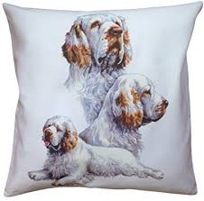 clumber spaniel group breed of dog cotton cushion er choice of cream or white