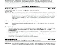 Executive Director Resume Samples Topshoppingnetwork Com