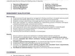 Resume Executive Summary Examples New Executive Summary For Resume Easy Samples Of Executive Summary