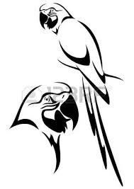 27447244 tropical parrot and bird head black and white vector outline?ver=6 parrot images & stock pictures royalty free parrot photos and on parrot outline template