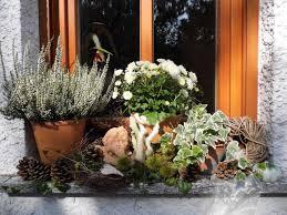 Herbstdeko Auf Der Fensterbank Bilder Und Fotos Herbst