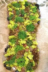 moss bathroom mat creative moss bath mat with stone living moss bath mat diy