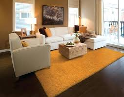 accent rugs a sheer shades area red