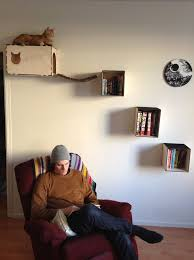 Introduction: Cat Shelves and Hideaway