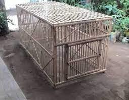 Selain itu, penyesuaian ukuran kandang terhadap ukuran pekarangan juga harus dipertimbangkan. Umbaran Jago Jual Kurungan Dan Kandang Ayam Banjarmasin Facebook