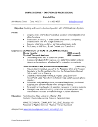 Sample Professional Resume For It Professional Inspirationa Resume