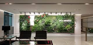 green wall office. benefits of plants in the office green wall i
