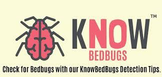 37+ Carpet Beetle Bed Bug Shed Gif