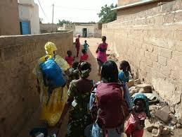 Seeds in Senegal – Page 3 – Ann Le & Asa Holland