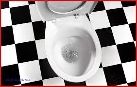 clean your jets flushing toilet bowl landscape