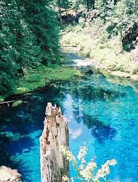 tamolitch blue pool. Fine Blue Tamolitch Blue Pool  Falls With T