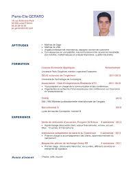 Resume 4 Par Utilisateur Cv Gerard Pdf Fichier Pdf